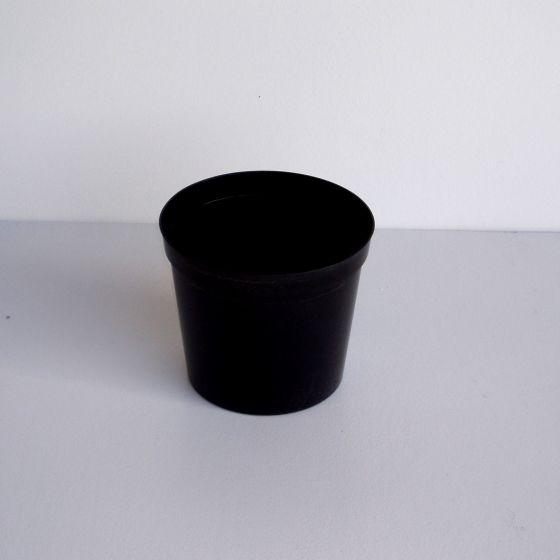 2L plante potte